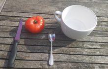 Faire Germer des Graines de Tomates Fraîches en 8 étapes