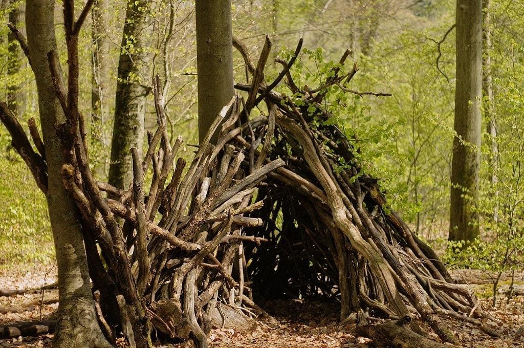 Construire un abri en forêt