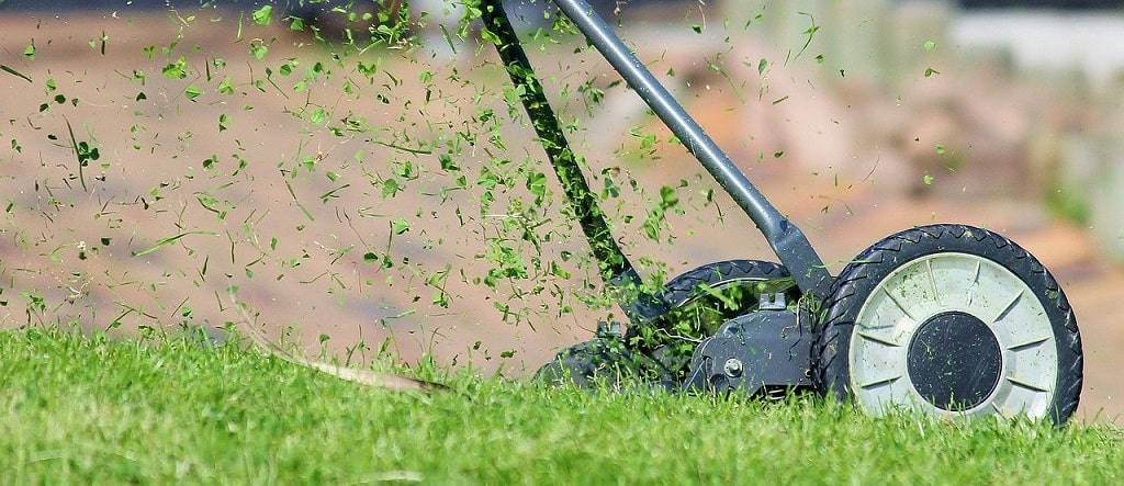 Tondre la pelouse à ras