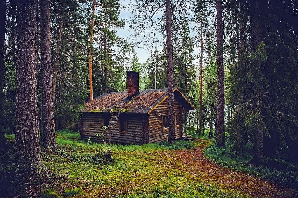 Vivre seul dans les bois