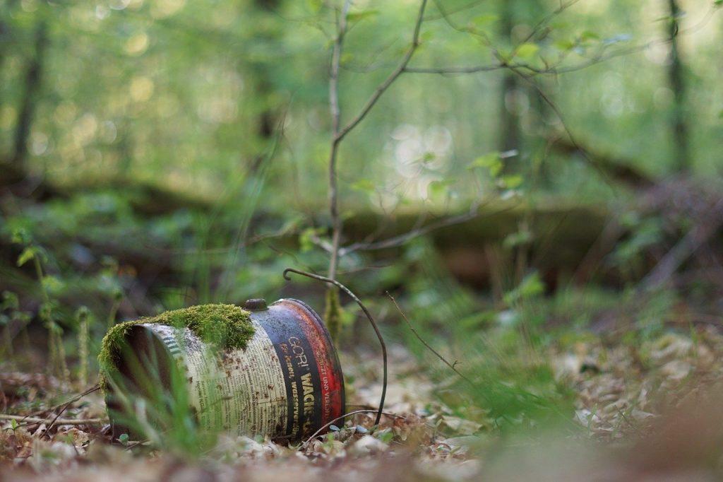 Attention à la cueillette de plantes sauvages sur des sites pollués