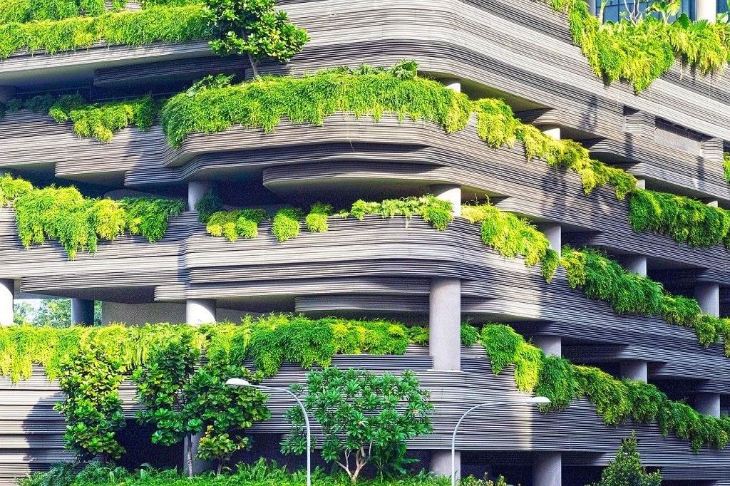 Terrasses bien vertes