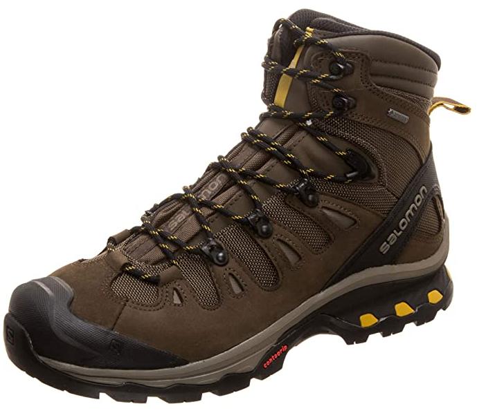 Chaussures de survie - SALOMON Quest 4d 3 GTX, Chaussures de Randonnée Hautes Homme