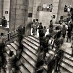 Survivalisme urbain - Fortes densité de population